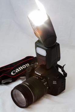 Bobby_2014_07_27_0098776_Canon EOS 5D_100.0 mm_(S99-F16.0-ISO400-FY)